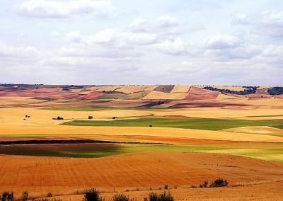 2007-06-Paisajes_de_Castilla_La_Mancha_104_copia